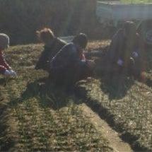 食と農にかかわる仕事…