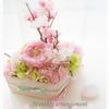 春を待つ時期のひとりごと◆KiyoのDiaryの画像