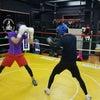 マスボクシングの画像
