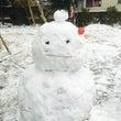 昨日は大雪でしたね。…