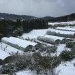 今日も雪が続きました