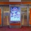 新歌舞伎座の画像