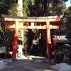 箱根〜本宮〜九頭龍〜白龍神社巡りの画像
