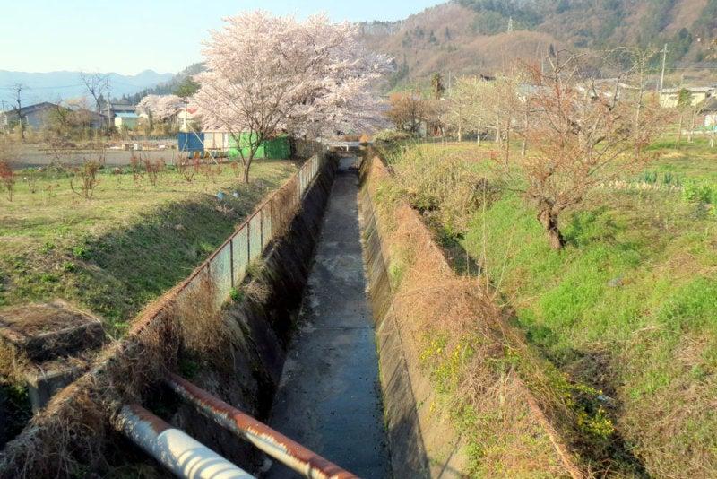 小川城⑨堀
