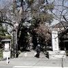 九品仏の阿弥陀如来様の光はすごい~!!東京都の画像