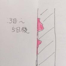 ヘナ図解3