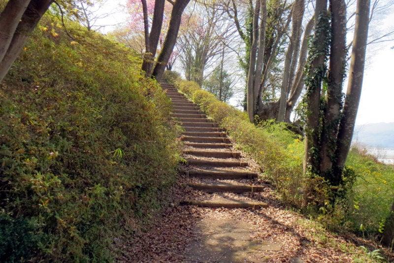 荘田城②登り坂