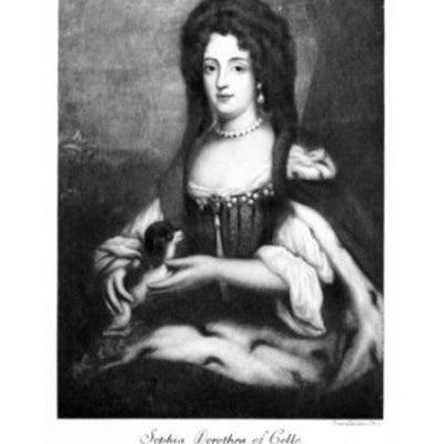 無冠の王妃 愛に生きるの記事に添付されている画像