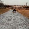 河川敷でお散歩∪・ω・∪の画像