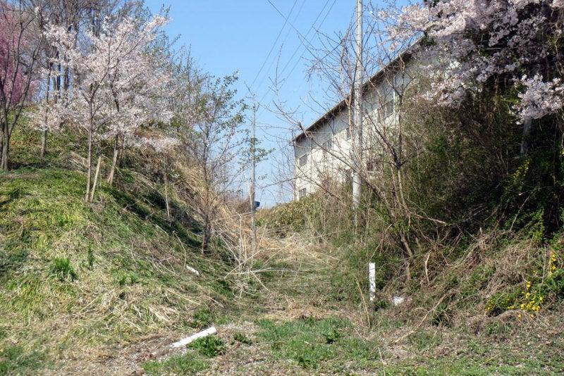 小沢城⑧空堀