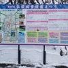 弘前城雪燈籠まつりの画像