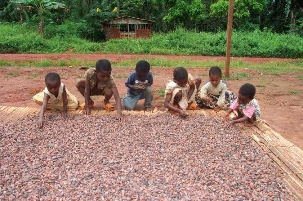 o0620041213564793588 - 子供の奴隷を使っている有名チョコレート企業7社