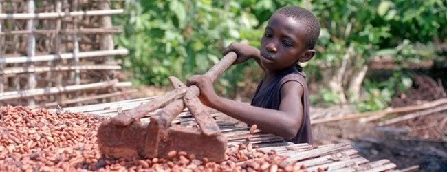 o0650025013564793587 - 子供の奴隷を使っている有名チョコレート企業7社