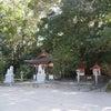 大山祇神社奥の院は生命の輝きが蘇るスーパーパワースポット★愛媛県の画像