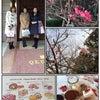 春とデザート(*^^*)の画像