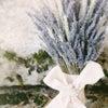 ラベンダーカラー アレンジフレンチネイルの画像