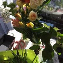 素敵な球根花のアレン…
