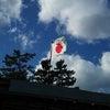 竹島の日の画像