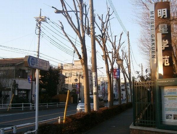 国分寺街道