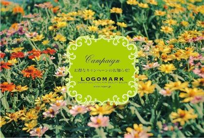 お花かわいいキャンペーンDMはがき・黄緑