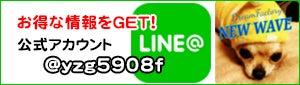 NEWWAVE公式LINE