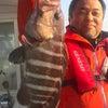 南風と根魚の画像