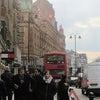 【イギリス】ロンドン小旅行 4. ハロッズ夢のティーサロンの画像