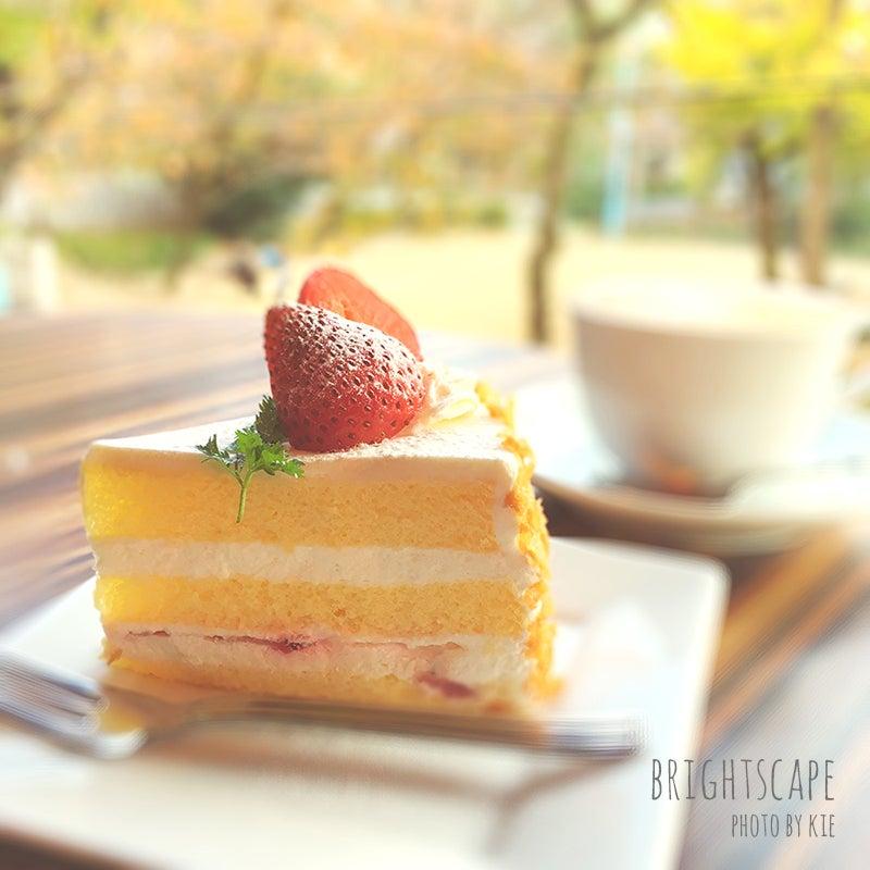 iPhoneでケーキを撮影