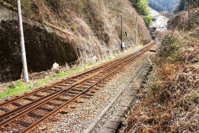 岩徳線と錦川清流線の分岐点を訪...