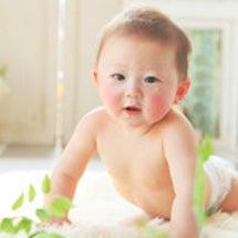 赤ちゃん写真展開催中…