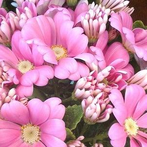 西宮「夙川・短歌と花」その354の画像