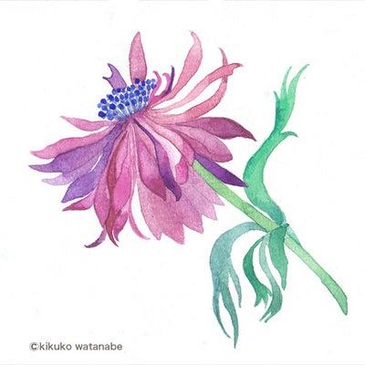 茨木のり子さんの詩「汲む」の記事に添付されている画像