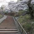 桜コースのご案内