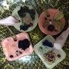 桜キャンドル入荷の画像