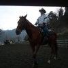 3月の、リバティ乗馬教室のお知らせの画像