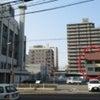3月20日 えひめ銀行本店となり・えひめのイヌネコ里親さがし会の画像