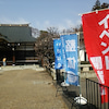 穏やかな春彼岸…ありがとう(^^)の画像