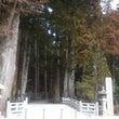 たび -高野山ー