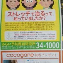 島田の情報誌ココガネ…