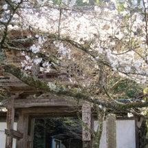 清水禅寺。