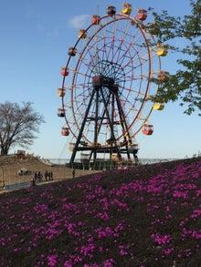 東京ドイツ村1