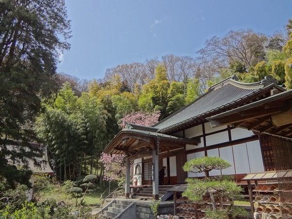 鎌倉・貞宗寺と法事・仏教への雑...
