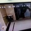 ▼唸声中国映像/エレベーターを待てずに蹴飛ばした酔っぱらい男、そのまま落下・・・の画像
