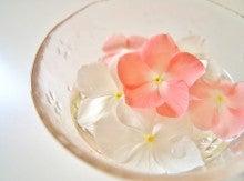 水に浮かぶお花