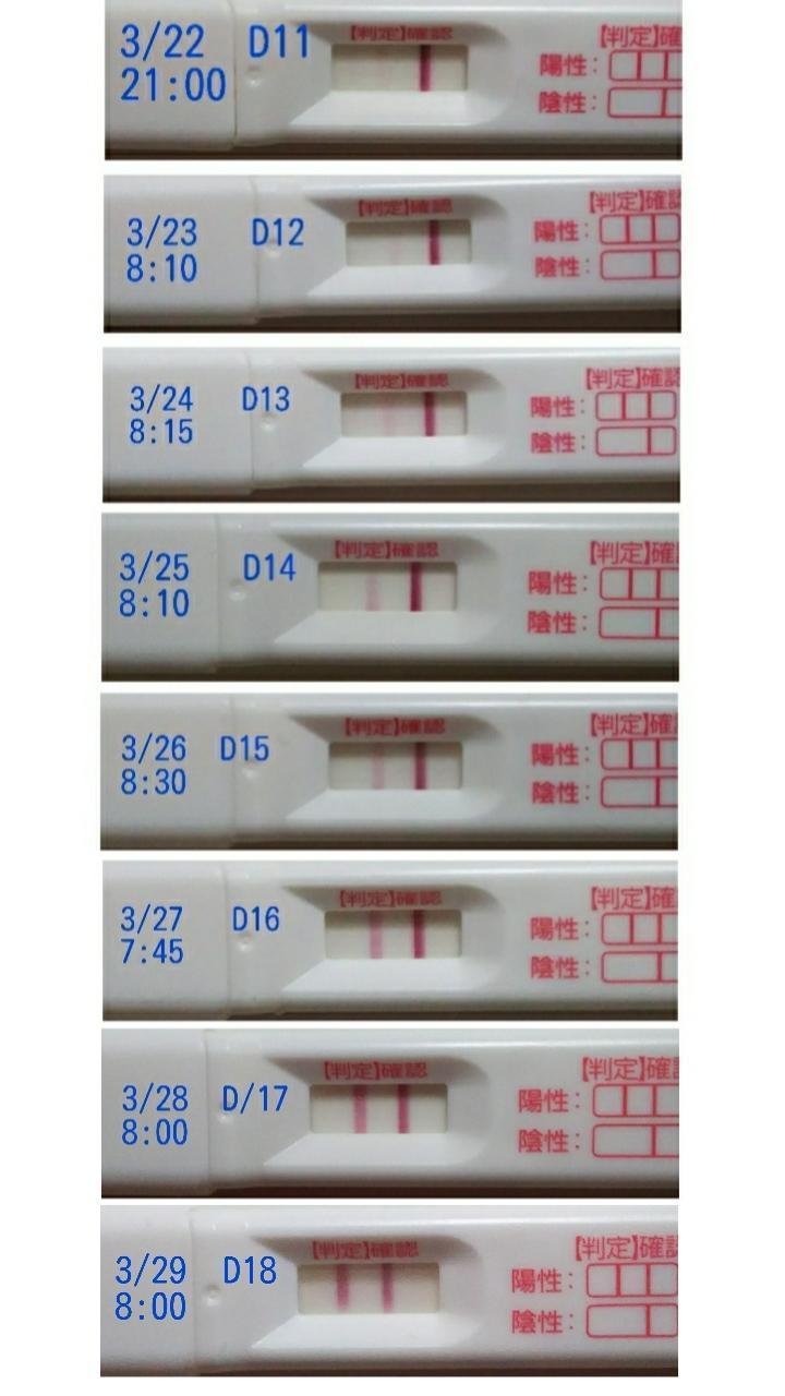 検査 ブログ 妊娠 薬 フライング