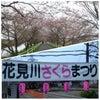 3月のまとめとお花見JOG☆ ♪d(′∇`)人′∇`)b♪ルンルンの画像