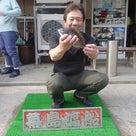 第十二回幕島杯チヌ釣り大会の記事より