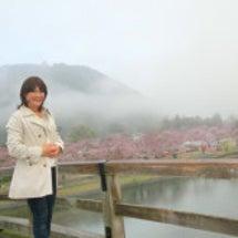 錦帯橋からの朝霧