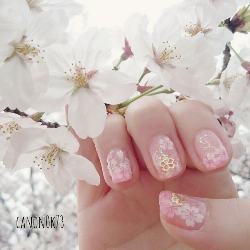 桜のシールはダイソーの!