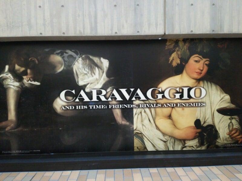 カラバッチョ展国立西洋美術館 Sophia 蘭の葉